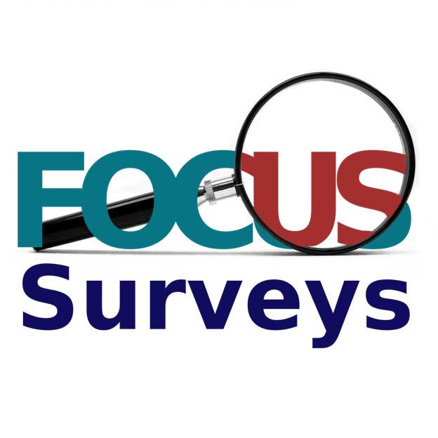 Web Survey - SME